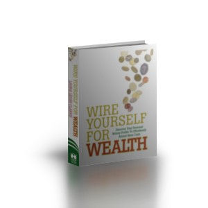 buy book wire yourself for wealth rh wireyourselfforwealth com Wiring Money Internationally Wiring Money Western Union